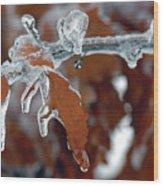 Iced Leaves Wood Print