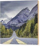 Icefield Parkway Wood Print