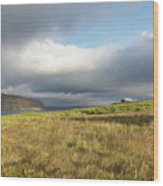 Iceland 37 Wood Print