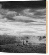Iceland Black And White Landscape Haukadalur Wood Print