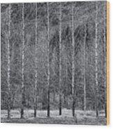 Iceland Landscape # 10 Wood Print