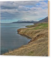Iceland Landscape # 8 Wood Print
