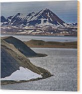 Icelandic Beauty Wood Print