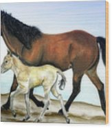 Icelandic Mare And Foal Wood Print