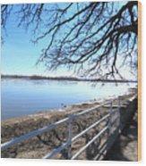 Icey River Wood Print