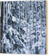 Iciles And Snow Wood Print