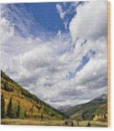 Iconic Colorado Wood Print