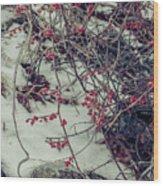 Icy Berries Wood Print