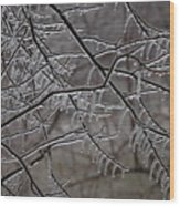Icy Branches Wood Print