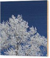 Icy Brilliance Wood Print