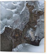 Icy Creek In Pocono Mountains Wood Print