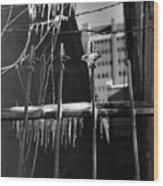 Icy Gates Wood Print