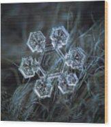 Icy Jewel Wood Print by Alexey Kljatov