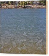 Icy Lake Wood Print