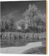 Icy Marsh Wood Print