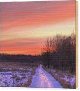 Icy Path Wood Print