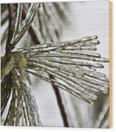 Icy Pines Wood Print