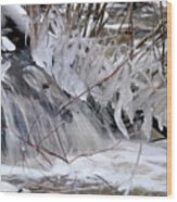 Icy Spring Wood Print