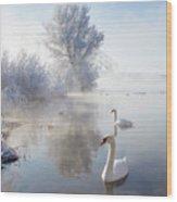 Icy Swan Lake Wood Print