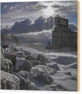 Icy Tundra In Buffalo Wood Print