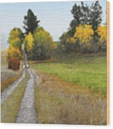 Idaho Backroad Autumn Wood Print