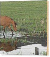 Idaho Farm Horse 2 Wood Print