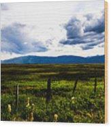 Idaho Field Wood Print