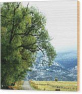 Idaho Road Trip Wood Print
