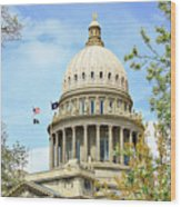 Idaho State Capitol In The Spring Wood Print