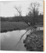 Idyllic Creek - Black And White Wood Print