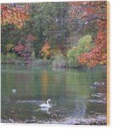 An Idyllic Autumn Wood Print