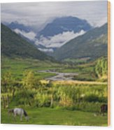 Idyllic Landscape Arunachal Pradesh Wood Print