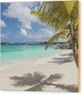 Idyllic Salomon Beach Wood Print