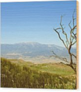 Idyllwild Mountain View With Dead Tree Wood Print