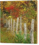 If I Could Paint No 1 - New England Fall Fence Wood Print