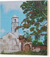 Iglesia De Santa Anna Wood Print