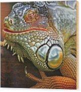 Iguana Full Of Color Wood Print