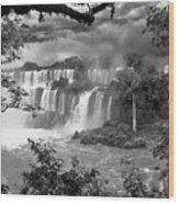 Iguazu Falls Vii Wood Print