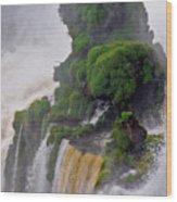 Iguazu Falls Viii Wood Print