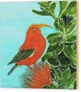 IIwi Scarlet Honeycreeper Bird #54 Wood Print