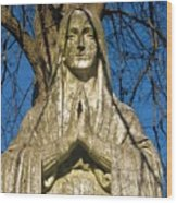 I'll Just Blend In - Hail Mary  Wood Print