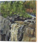 Illgen Falls Wood Print