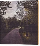 Illuminated Foot Path Wood Print