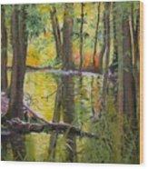 Illuminated Wood Print
