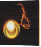 Illuminated Objects Wood Print