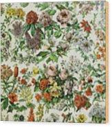 Illustration Of Flowering Plants Wood Print