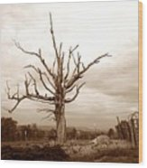 Fantastic Tree Wood Print