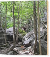 Image Included In Queen The Novel - Rocks At Smugglers Notch Wood Print