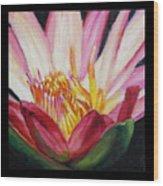 Image Number Ten Wood Print
