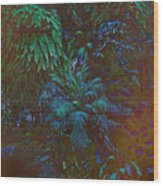 Imagination Leafing Out Wood Print